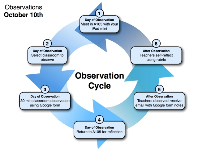 Observation Cycle